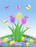 Isolated purple pink and yellow butterfly and easter egg and tulip spring illustration Royalty Free Stock Images