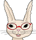 Isolated Rabbit in Red Glasses Royalty Free Stock Images