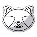 Isolated raccoon cartoon design. Raccoon cartoon icon. Animal cute adorable creature and friendly theme. Isolated design. Vector illustration Royalty Free Stock Images