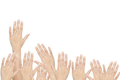 Isolated: raise up hands. Of the team members, teamwork Royalty Free Stock Image