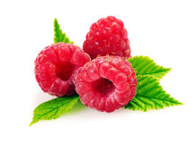 Isolated raspberries. Fresh raspberry with leaf. Isolated on white background Stock Photography