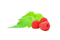 Isolated raspberry Royalty Free Stock Photos