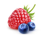 Isolated raspberry and blueberries. Isolated berries. One fresh raspberry and two blueberries isolated on white background with clipping path Royalty Free Stock Photos