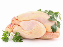 Isolated raw chicken Stock Image