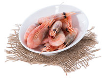 Isolated Raw Prawns Stock Image
