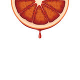 Isolated realistic colored half circle slice of red color juicy bloody orange with drop of juice on white background. Isolated realistic colored half circle Royalty Free Stock Images
