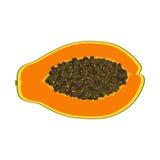 Isolated realistic colored slice of juicy orange papaya, pawpaw, paw paw with seeds on white background. Stock Images