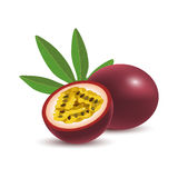 Isolated realistic colored whole and half of juicy purple passion fruit and green leaf with shadow on white background. Stock Image