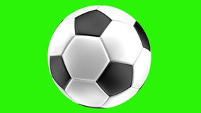Isolated realistic soccer ball on a green background rotates, 3d rendering vector illustration