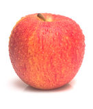 Isolated red apple Royalty Free Stock Photography