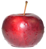 Isolated red apple Royalty Free Stock Image