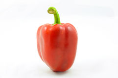 Isolated red bell pepper Stock Photography