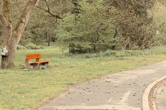 Isolated red bench in the park near an asphalt road Germany, Europe royalty free stock photo
