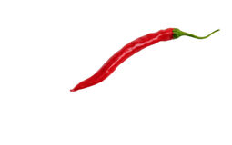 Isolated Red Chili Pepper stock images