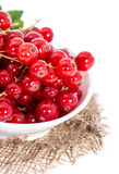 Isolated Red Currants Royalty Free Stock Image