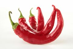 Isolated red pepper Royalty Free Stock Photos