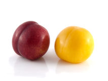 Isolated red and yellow ripe plums (white). Isolated red and yellow ripe plums (white background). Fresh diet fruit. Healthy fruit with vitamins Royalty Free Stock Images