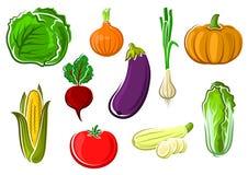 Isolated ripe healthy farm vegetables stock illustration