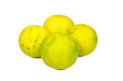 Isolated ripe lime. The food ingredient Royalty Free Stock Photo