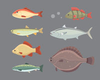 Isolated river fish. Set of freshwater sea cartoon fishes. Fauna ocean vector illustration.  Stock Images
