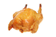 Isolated roast chicken Royalty Free Stock Images