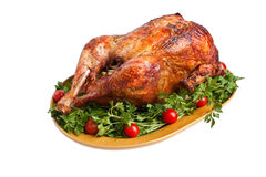 Isolated roasted turkey Royalty Free Stock Images