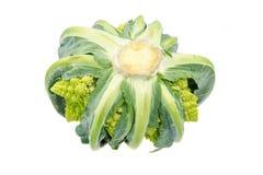 Isolated Romanesque Cauliflower Royalty Free Stock Photo