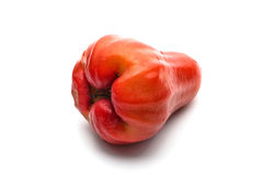 Rose apple. An isolated rose apple on white background Royalty Free Stock Photography