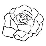 Isolated rose. Outline drawing. Stock vector illustration. Royalty Free Stock Image