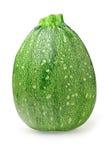 Isolated round zucchini Stock Photo