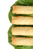 Row of spring rolls Stock Images