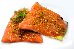 Isolated salmon Stock Photography