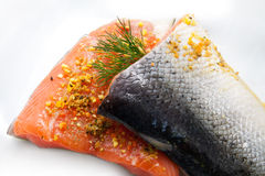 Isolated salmon Stock Image