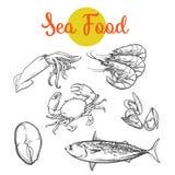 Isolated set of fresh marine products vector illustration