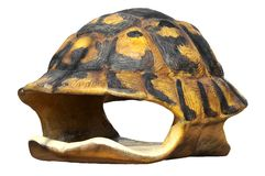 Isolated shell of tortoise Stock Images