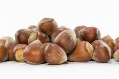 Isolated shelled nuts. Shelled nuts on white background Royalty Free Stock Photos