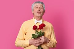 Isolated shot of attractive wrinkled grey haired man holds red roses, dressed in yellow elegant shirt and bowtie, keeps lips stock photo