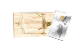 Isolated shot of bait credit card in mousetrap stock image
