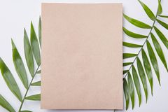 Isolated shot of blank sheet of paper against leaves of fern as background. Copy space for your promotional content. Floral. Isolated shot of blank sheet of stock photo