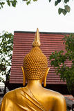 Isolated shot of golden statue of Buddha statue Royalty Free Stock Photos