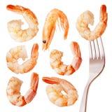 Isolated shrimps Royalty Free Stock Photo