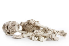 Isolated Skeleton Stock Photos