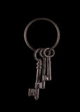 Isolated Skeleton Keys Stock Images