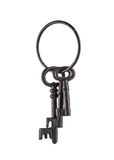 Isolated Skeleton Keys Stock Photography