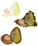 Isolated sketch of figs Royalty Free Stock Images