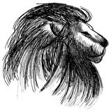 Isolated sketch of a lion in black Stock Image