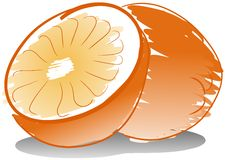 Isolated sketch of an Orange fruit Stock Images