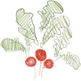 Isolated sketch of radishes Royalty Free Stock Image