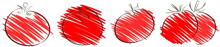 Isolated sketch of tomato Royalty Free Stock Images