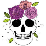 Isolated skull with roses. Vector isolated white simple skull with purple and pink roses with green leaves Royalty Free Stock Photography